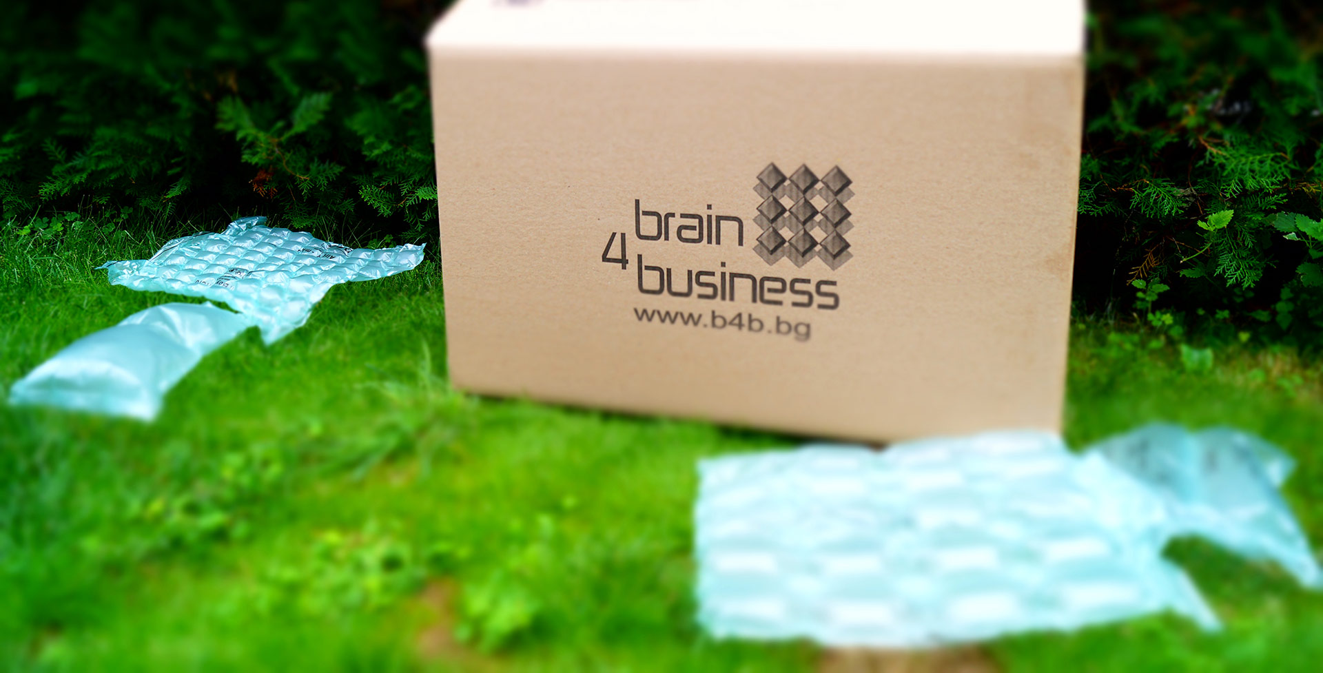 За Brain 4 Business